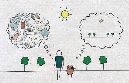 koira+ihminen